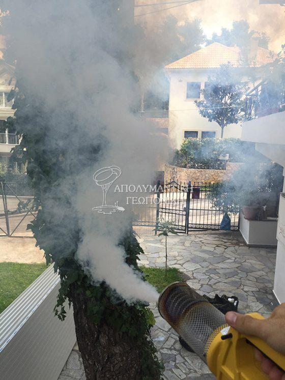 Θερμή εκνέφωση για κουνούπια σε κήπο