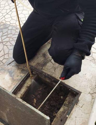 Απεντομώσεις - Απολυμάνσεις για κατσαρίδες