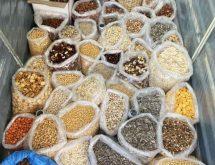 Καταπολέμηση εντόμων τροφίμων με υποκαπνισμό