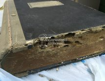 Ζημιά από υπόγειους τερμίτες σε αρχεία συμβολαιογραφείου