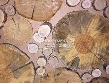Προσβεβλημένοι διασκοσμητικοί κορμοί ξύλων
