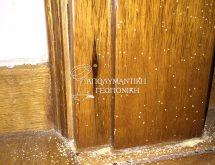 Προσβολή ξυλοφάγων εντόμων σε κάσα