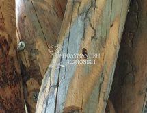 Σαράκι - Ζημιές σε ξυλεία