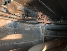 Υπόγειοι τερμίτες - χωμάτινοι αγωγοί τερμιτών σε υπόγειο χώρο