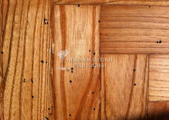Οπές εξόδου ξυλοφάγων κολεόπτερων σε ξύλινο πάτωμα
