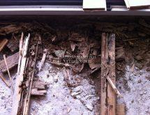 Ζημιά σε ξύλινο πάτωμα από υπόγειους τερμίτες