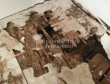 Ζημιές από υπόγειους τερμίτες
