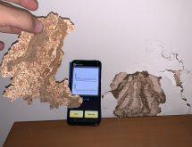 Συσκευή Termatrac για ανίχνευση τερμιτών