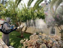 Εκνέφωση σε κηπο με κουνούπια