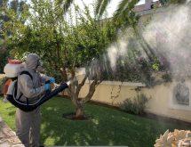 Καταπολέμηση κουνουπιών με εκνέφωση σε κήπο