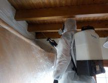 Αντιμετώπιση ξυλοφάγων μυρμηγκιών σε ξύλινο ταβάνι