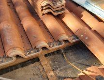 Αντιμετώπιση ξυλοφάγα μυρμήγκια σε στέγη